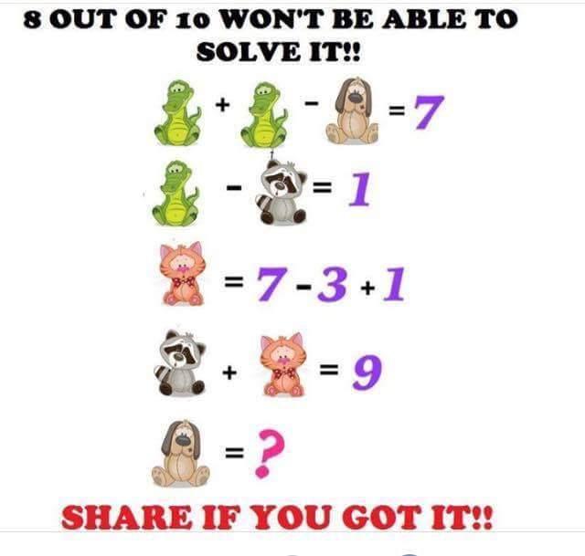 Animal math quiz | Spicy Quiz